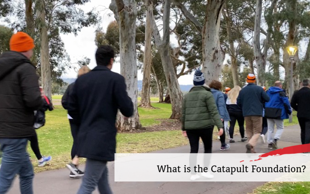 What is the Catapult Foundation?